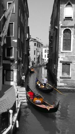 BFPS_Photo-Venice